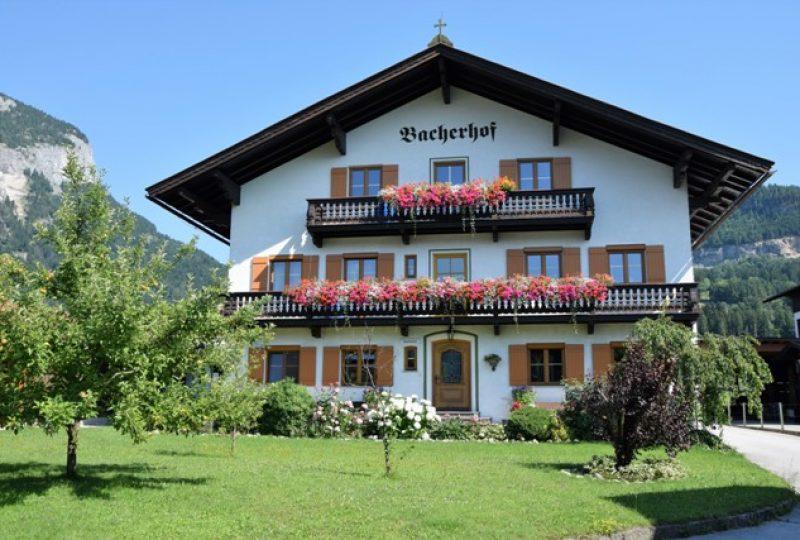 G Blumen_2017_WerlbergerBacher_1